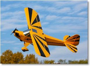 Piper Clipped Wing Cub, PNP