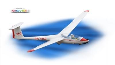 ASK-21 3.2m - E-Version Segler, ARF
