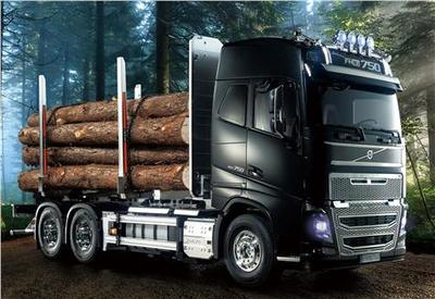 Volvo FH16 Globetrotter 750 6x4 Timber Truck